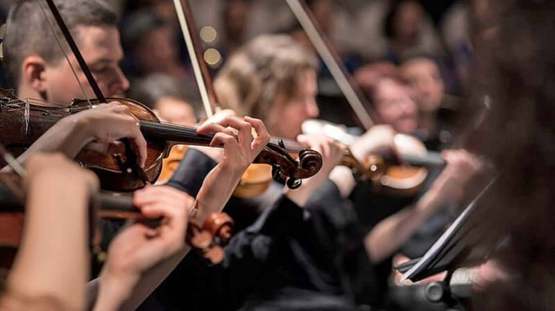 A line of violinists playing in an orchestra